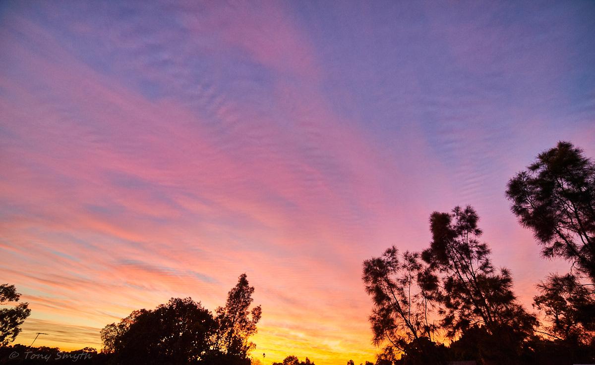 IMAGE: http://smythie.id.au/images/D4/Parramatta/_ATS8832_1200p.jpg