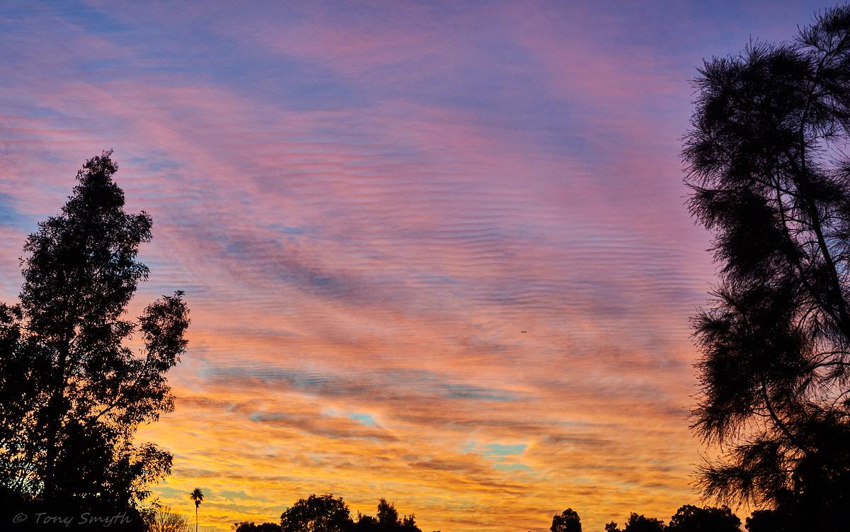 IMAGE: http://smythie.id.au/images/D4/Parramatta/_ATS8836_1200p.jpg